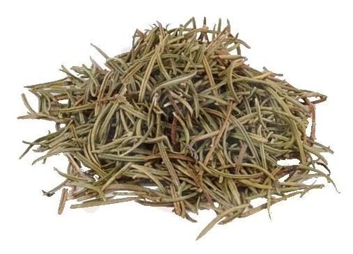 Tee mit Rosmarin zum Abnehmen