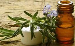 Ätherische Rosmarinöl kaufen© Comugnero Silvana - Fotolia.com
